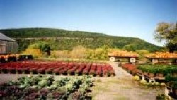 Schoharie Valley Farms